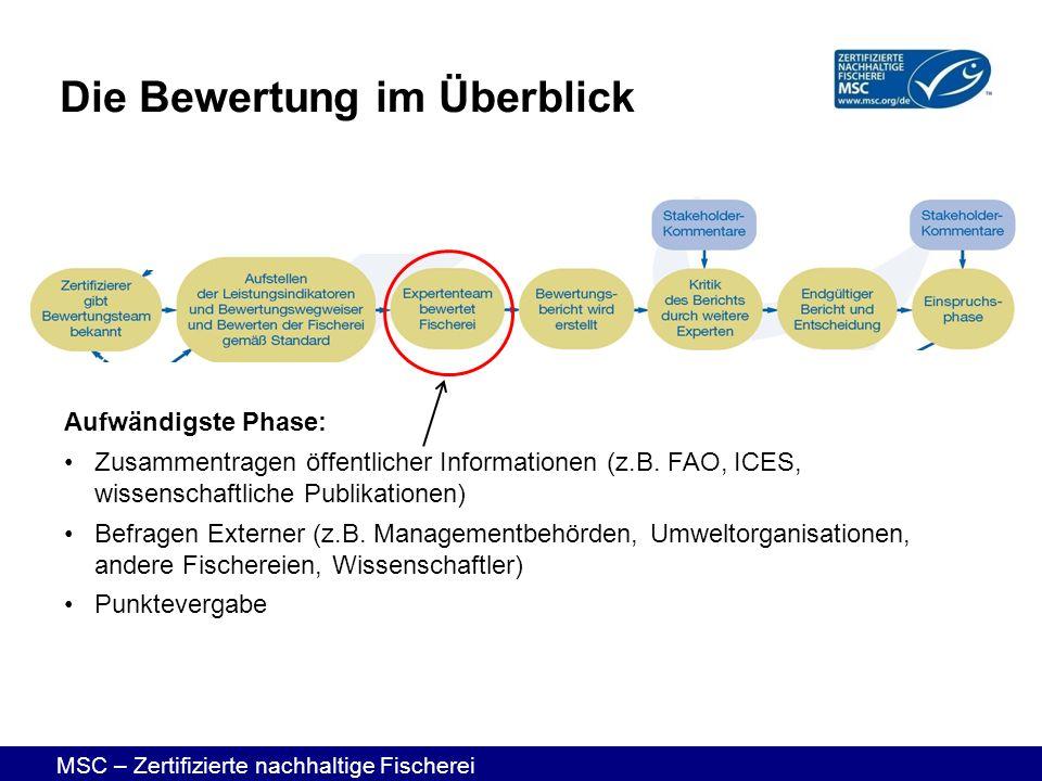MSC – Zertifizierte nachhaltige Fischerei Aufwändigste Phase: Zusammentragen öffentlicher Informationen (z.B. FAO, ICES, wissenschaftliche Publikation