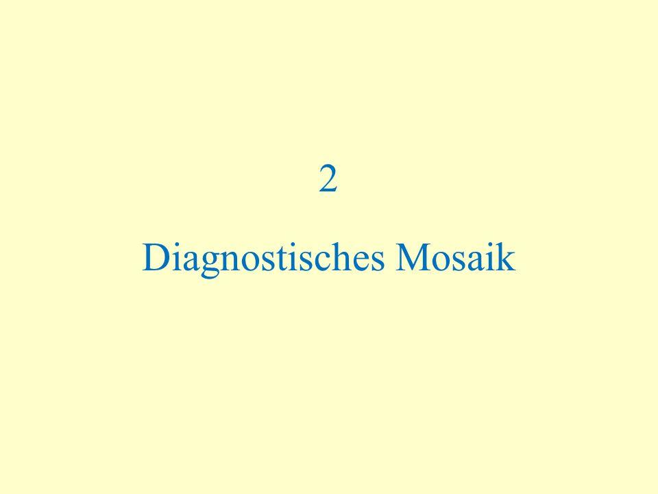 2 Diagnostisches Mosaik