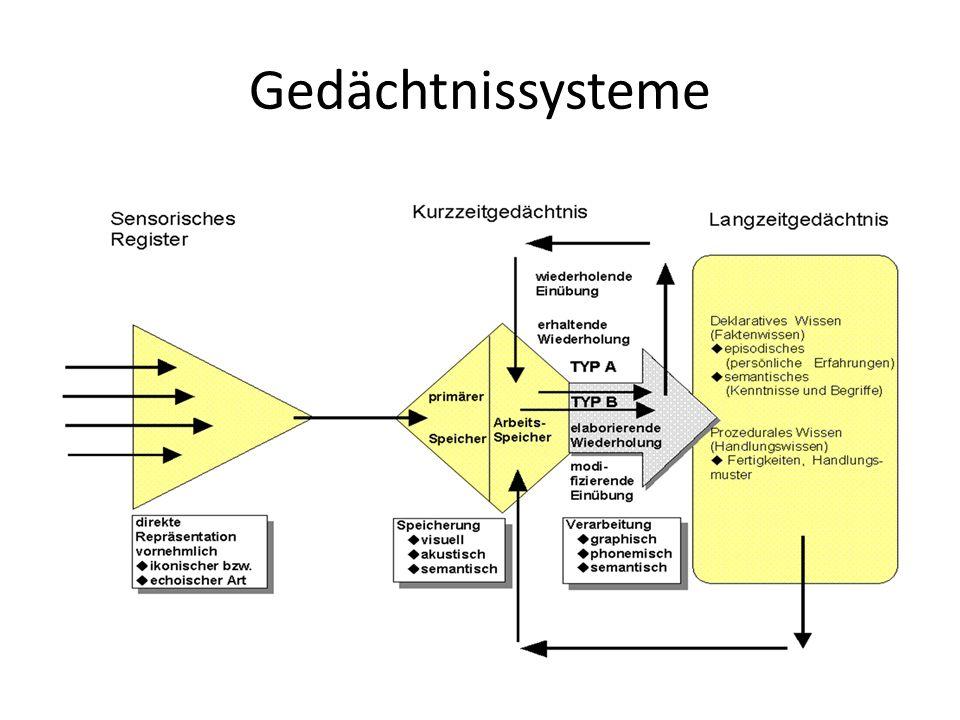 Gedächtnissysteme