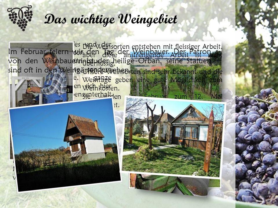 Die Lage des Dorfes und der fruchtbare Boden ist hervorragend zum Weinbau.