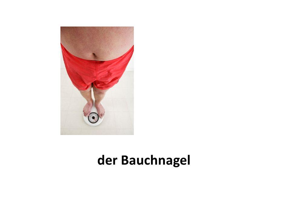 der Bauch/der Magen