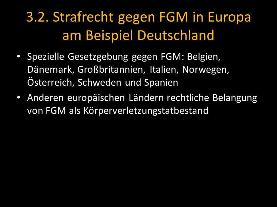 3.2. Strafrecht gegen FGM in Europa am Beispiel Deutschland Spezielle Gesetzgebung gegen FGM: Belgien, Dänemark, Großbritannien, Italien, Norwegen, Ös