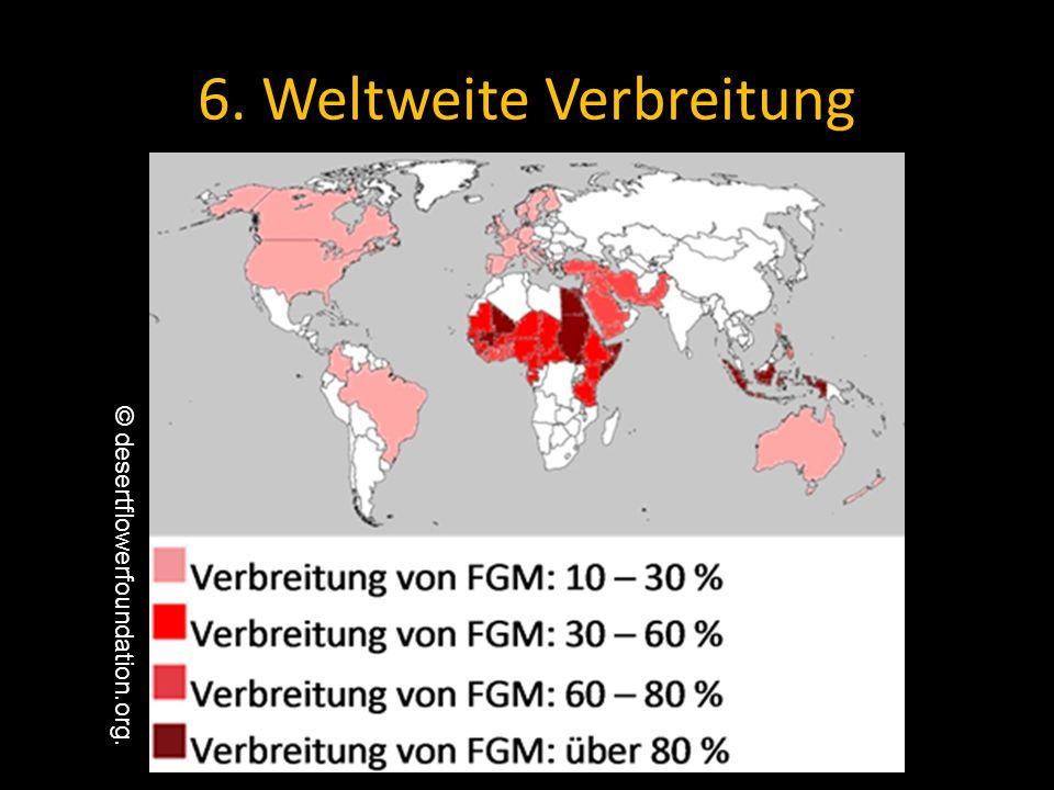 6. Weltweite Verbreitung © desertflowerfoundation.org.