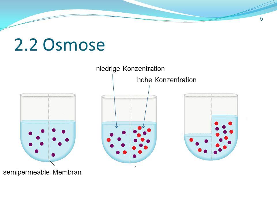 2.3 Osmotische Druck(Rechnung) osmotischer Druck 6