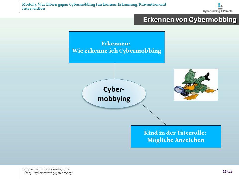 Cyber- mobbying Erkennen: Wie erkenne ich Cybermobbing Kind in der Täterrolle: Mögliche Anzeichen © CyberTraining-4-Parents, 2012 http://cybertraining