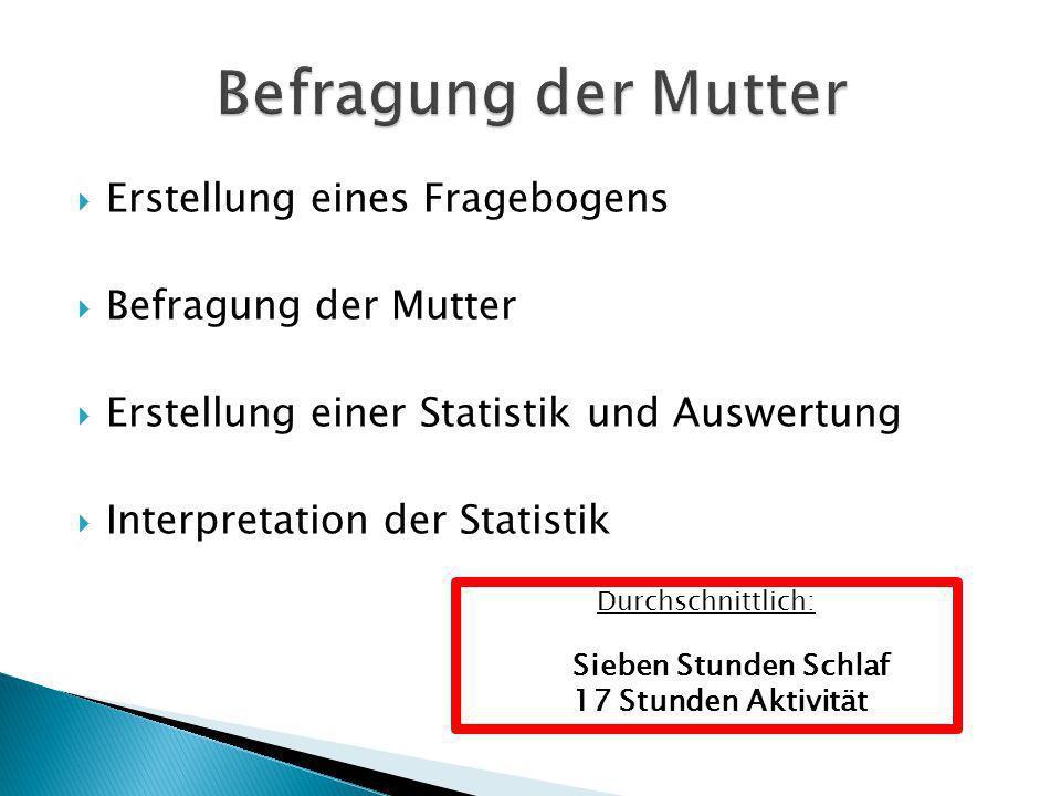 Erstellung eines Fragebogens Befragung der Mutter Erstellung einer Statistik und Auswertung Interpretation der Statistik Durchschnittlich: Sieben Stun