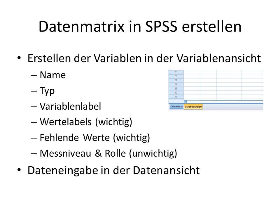 Datenmatrix in SPSS erstellen Erstellen der Variablen in der Variablenansicht – Name – Typ – Variablenlabel – Wertelabels (wichtig) – Fehlende Werte (