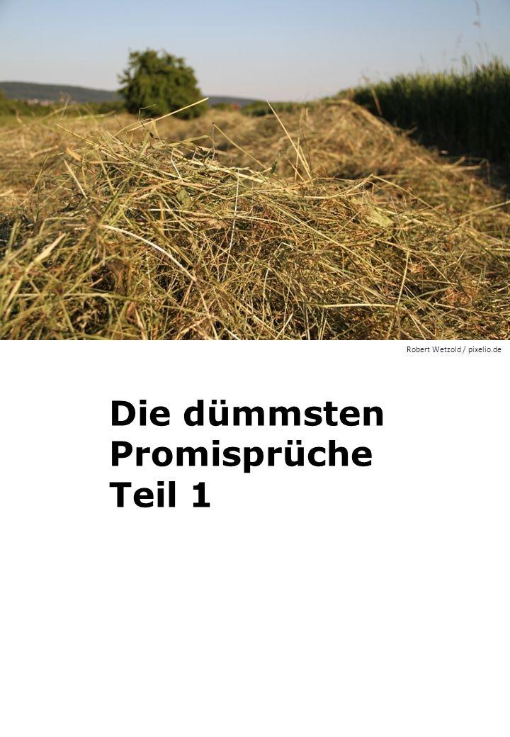Die dümmsten Promisprüche Teil 1 Robert Wetzold / pixelio.de