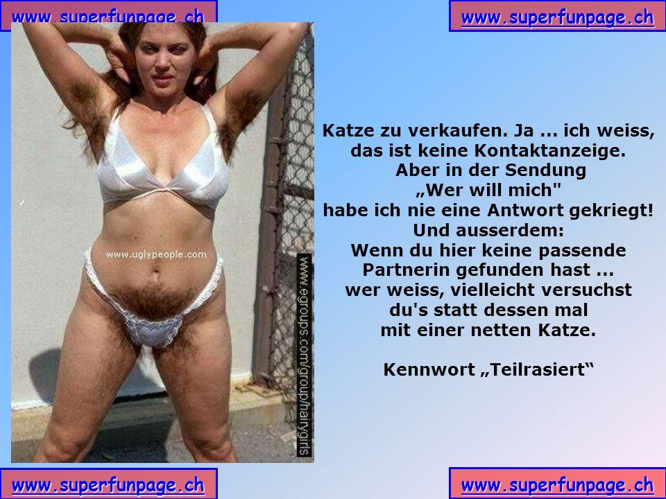 www.superfunpage.ch Katze zu verkaufen.Ja... ich weiss, das ist keine Kontaktanzeige.