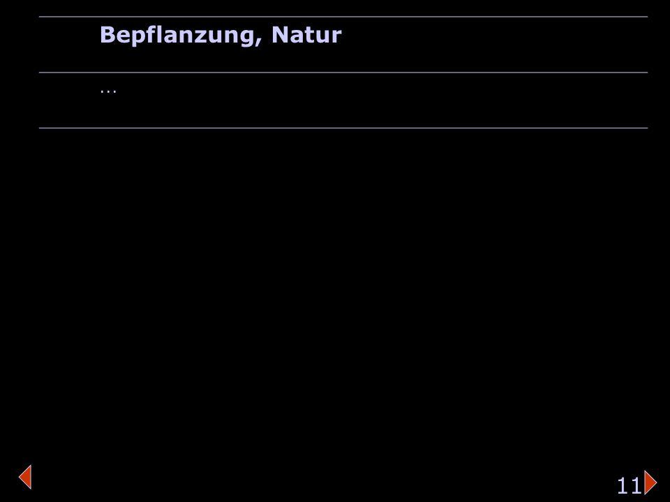 strassenschildBepflanzung Bepflanzung, Natur... 11