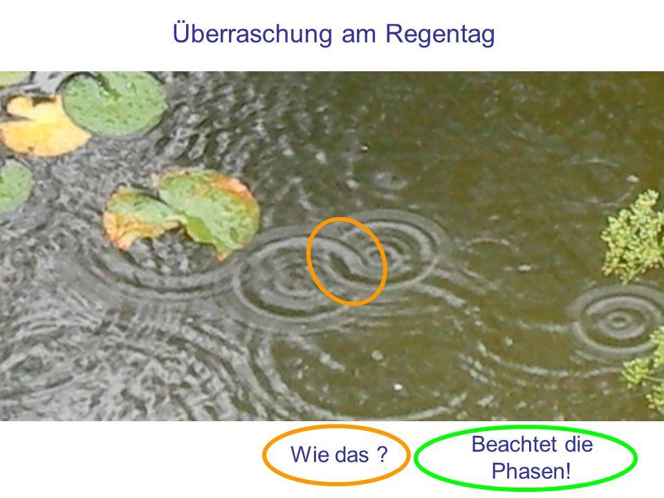 Überraschung am Regentag Wie das ? Beachtet die Phasen!