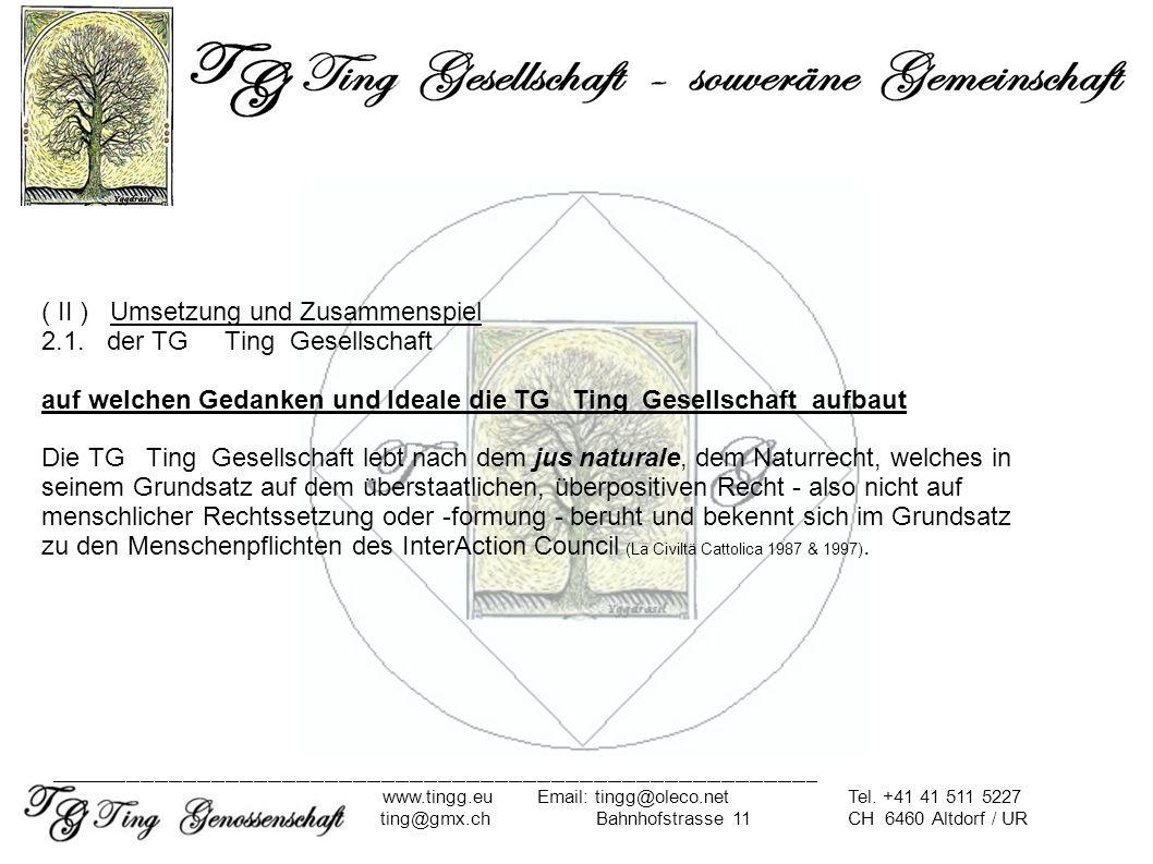 ( II ) Umsetzung und Zusammenspiel 2.1. der TG Ting Gesellschaft auf welchen Gedanken und Ideale die TG Ting Gesellschaft aufbaut Die TG Ting Gesellsc