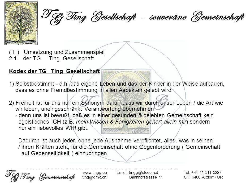 ( II ) Umsetzung und Zusammenspiel 2.1. der TG Ting Gesellschaft Kodex der TG Ting Gesellschaft 1) Selbstbestimmt - d.h. das eigene Leben und das der