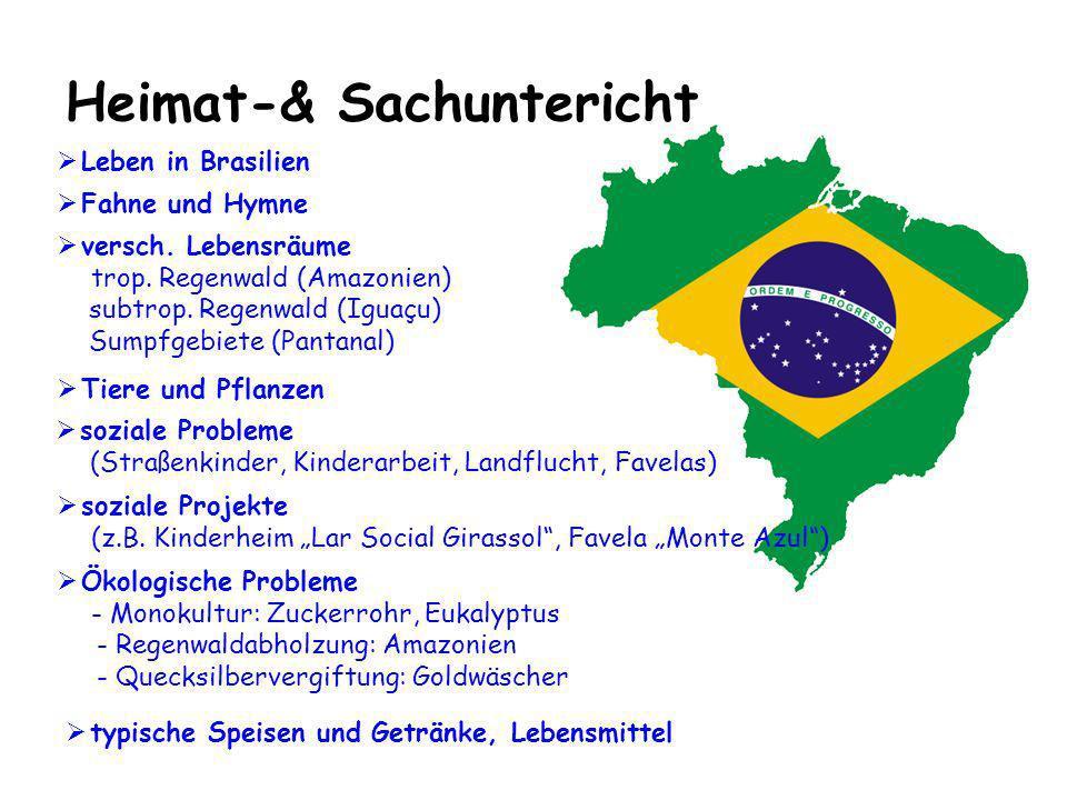 Heimat-& Sachuntericht soziale Projekte (z.B. Kinderheim Lar Social Girassol, Favela Monte Azul) Ökologische Probleme - Monokultur: Zuckerrohr, Eukaly