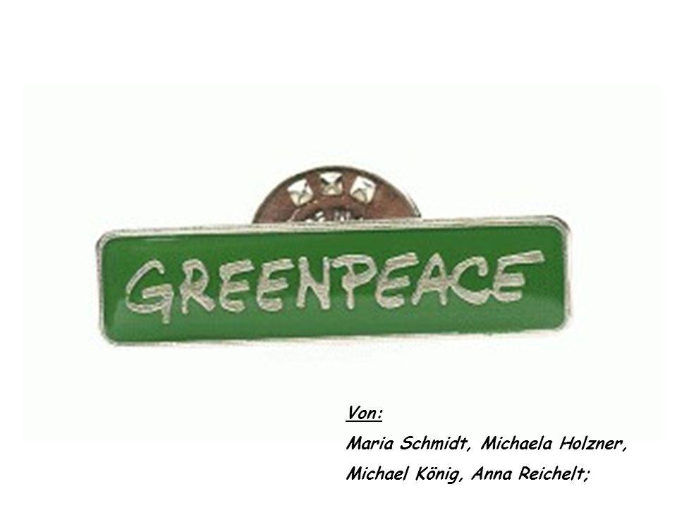 Greenpeace Die Entstehung von Greenpeace Der Lebensraum der Wale Walfang Zusammenfassung Film Quellen