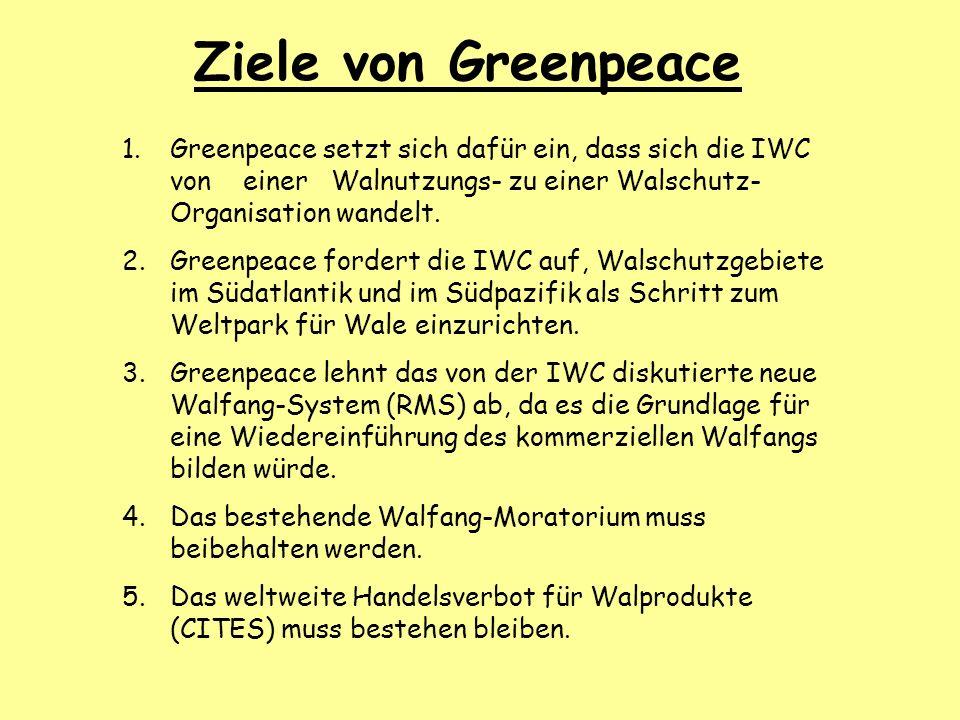 Ziele von Greenpeace 1.Greenpeace setzt sich dafür ein, dass sich die IWC von einer Walnutzungs- zu einer Walschutz- Organisation wandelt. 2.Greenpeac