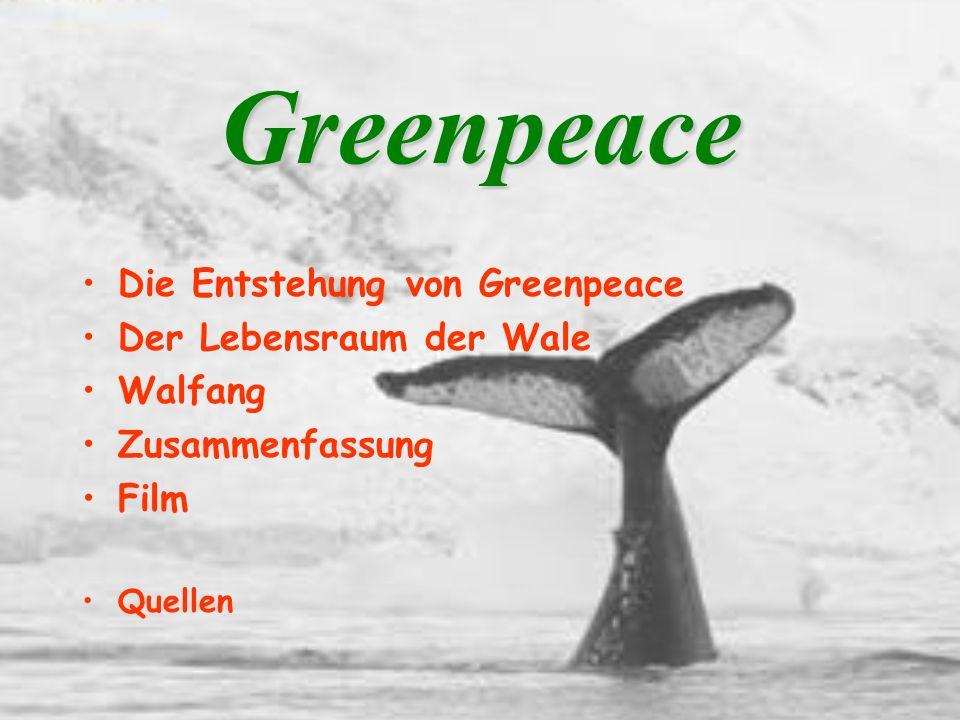 Quellen: www.greenpeace.de www.greenpeace.de/deutschland/ www.greenpeace.org/deutschland/ www.greenpeace.de/aachen/meere-fotos-walfang.html