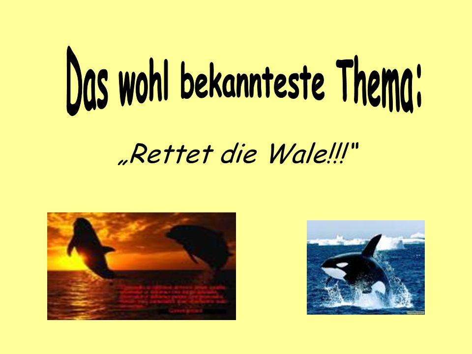 Rettet die Wale!!!
