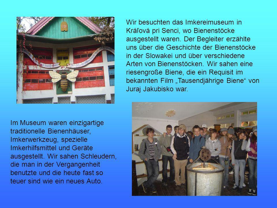 Wir besuchten das Imkereimuseum in Kráľová pri Senci, wo Bienenstöcke ausgestellt waren.