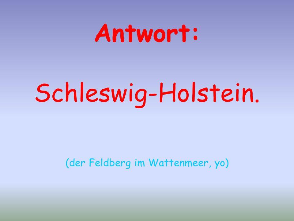 Antwort: Schleswig-Holstein. (der Feldberg im Wattenmeer, yo)