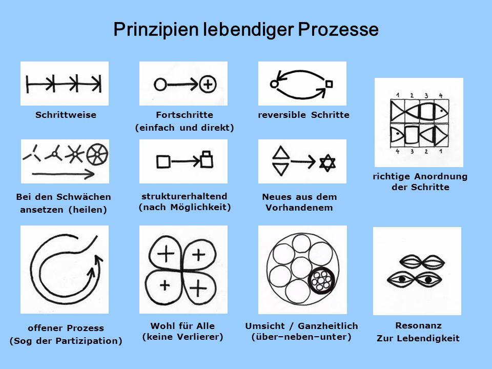 Prinzipien lebendiger Prozesse Schrittweise reversible Schritte Fortschritte (einfach und direkt) strukturerhaltend (nach Möglichkeit) Neues aus dem V