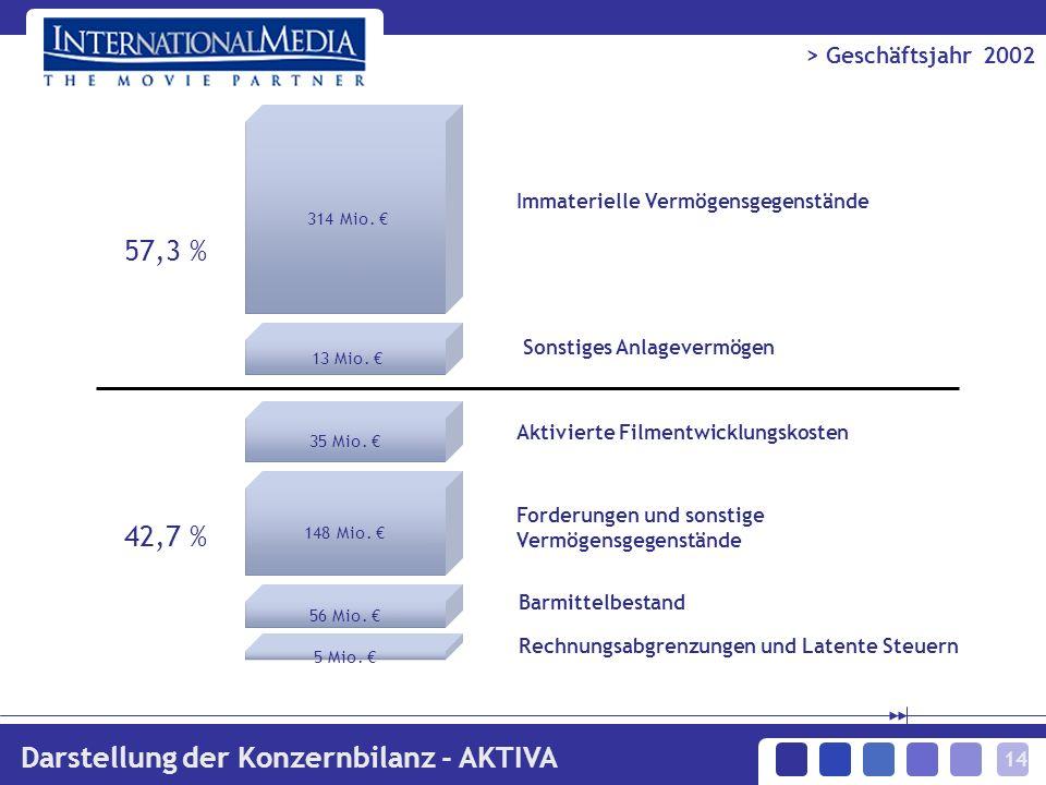 14 > Geschäftsjahr 2002 Darstellung der Konzernbilanz - AKTIVA 314 Mio.