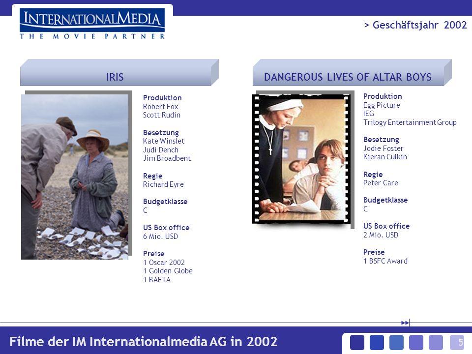16 > Geschäftsjahr 2002 Darstellung der Konzernbilanz - PASSIVA 173 Mio.