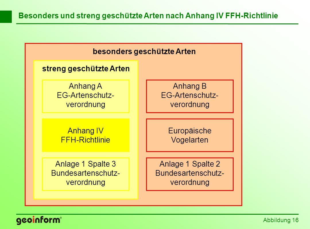 Abbildung 16 Besonders und streng geschützte Arten nach Anhang IV FFH-Richtlinie Anhang B EG-Artenschutz- verordnung Anlage 1 Spalte 2 Bundesartenschu