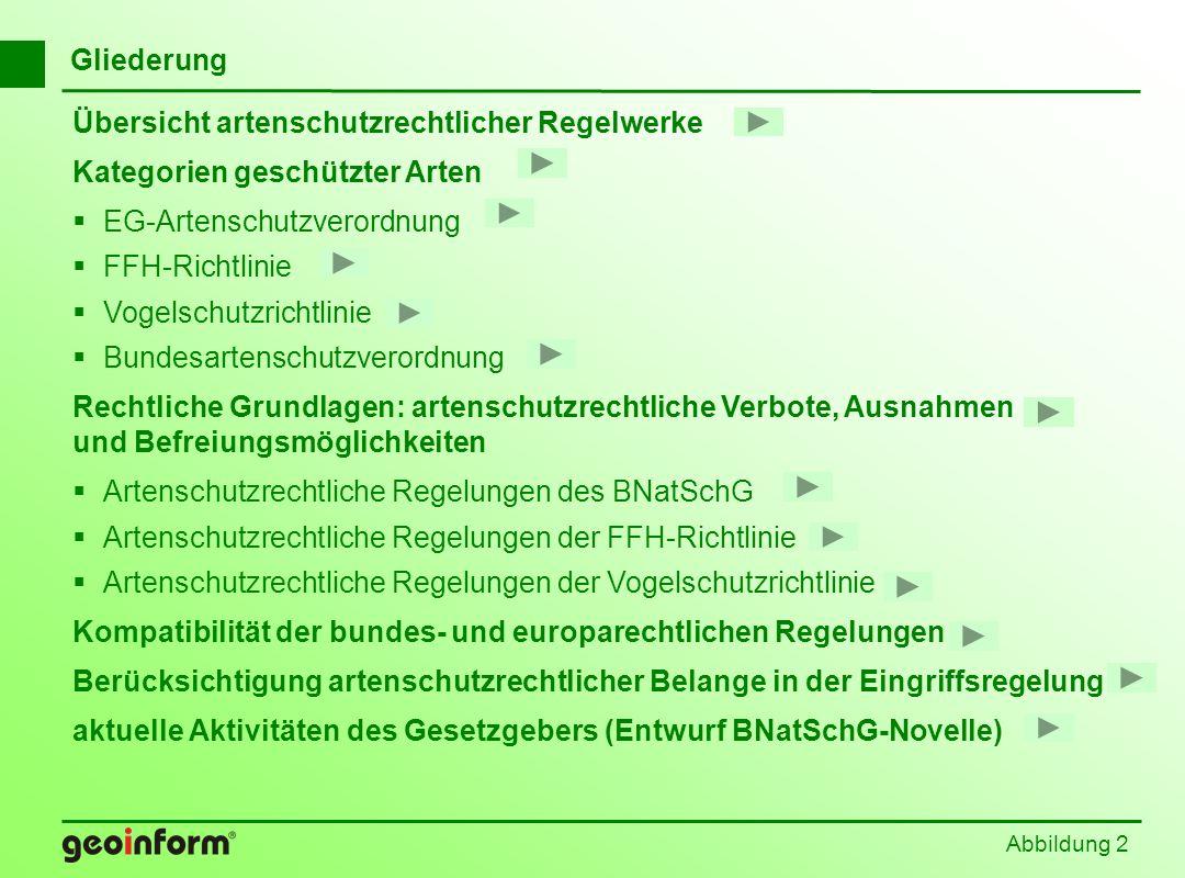 Abbildung 3 Übersicht artenschutzrechtlicher Regelwerke Washingtoner Arten- schutzübereinkommen (1973/1975) EG-Artenschutz-VO (1973) Ramsar-Konvention (1971/1976) Berner Konvention (1979/1984) Bonner Konvention (1979/1984) Eurobats (1991/1993) Bundesartenschutz- verordnung (1989) Vogelschutz-RL (1979) FFH-RL (1992) Bundesnaturschutzgesetz (BNatSchG) Biodiversitätskonvention (1992/1993)
