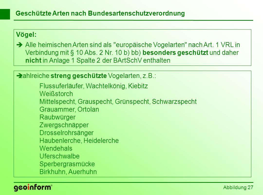 Abbildung 27 Geschützte Arten nach Bundesartenschutzverordnung Vögel: Alle heimischen Arten sind als