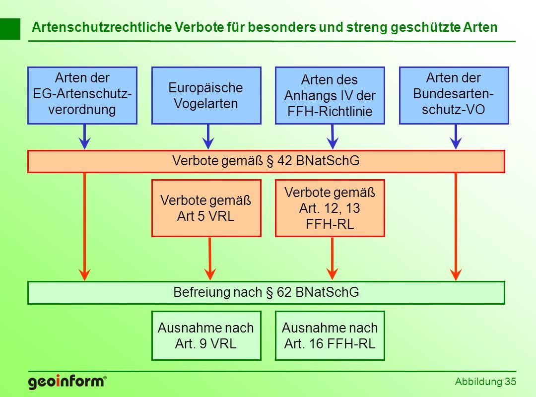 Abbildung 35 Artenschutzrechtliche Verbote für besonders und streng geschützte Arten Befreiung nach § 62 BNatSchG Europäische Vogelarten Arten der EG-