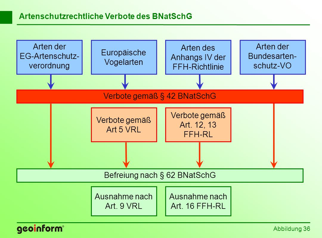 Abbildung 36 Befreiung nach § 62 BNatSchG Europäische Vogelarten Arten der EG-Artenschutz- verordnung Arten der Bundesarten- schutz-VO Arten des Anhan