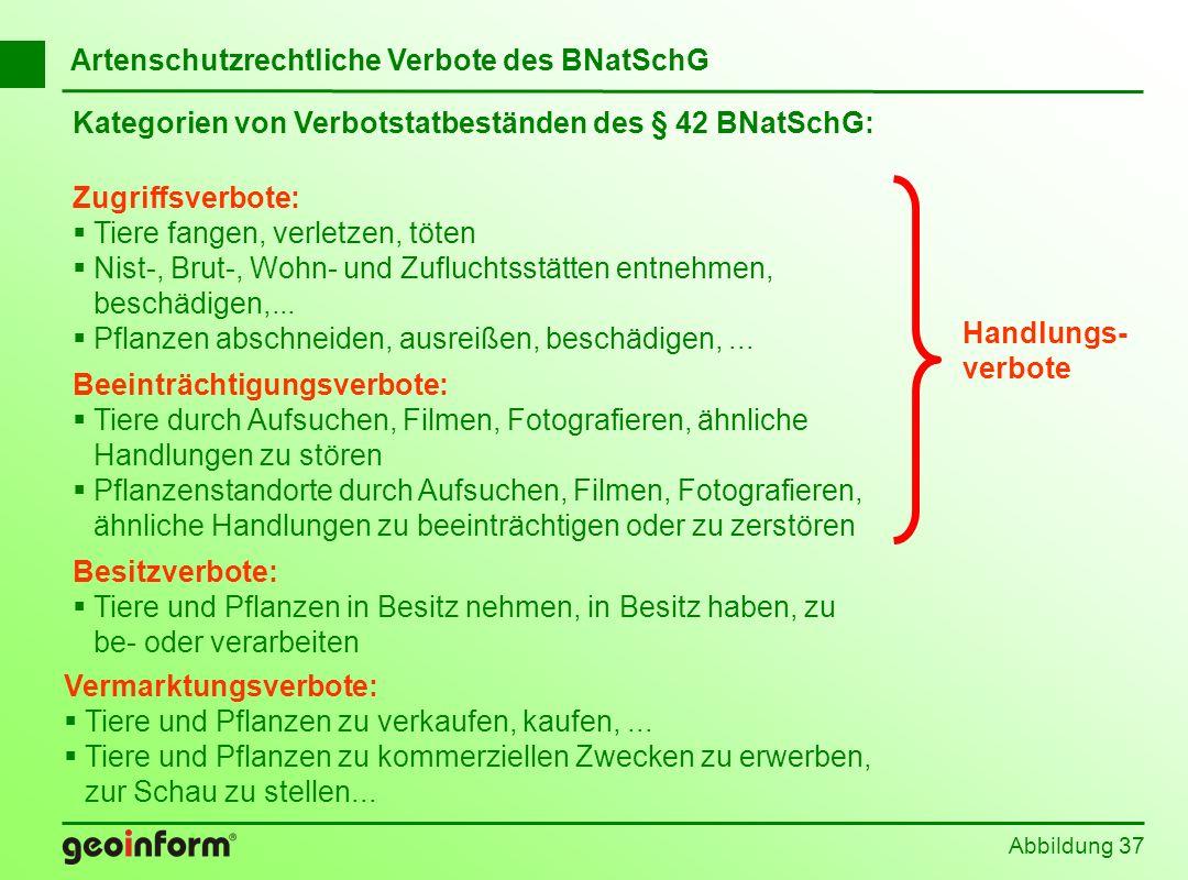 Abbildung 37 Kategorien von Verbotstatbeständen des § 42 BNatSchG: Zugriffsverbote: Tiere fangen, verletzen, töten Nist-, Brut-, Wohn- und Zufluchtsst