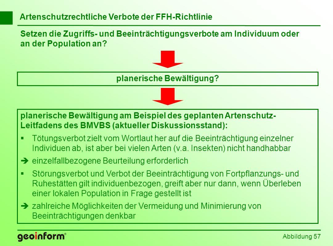 Setzen die Zugriffs- und Beeinträchtigungsverbote am Individuum oder an der Population an? Abbildung 57 Artenschutzrechtliche Verbote der FFH-Richtlin