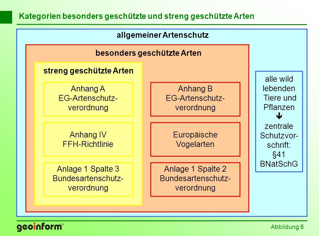 allgemeiner Artenschutz alle wild lebenden Tiere und Pflanzen zentrale Schutzvor- schrift: §41 BNatSchG Abbildung 6 Kategorien besonders geschützte un