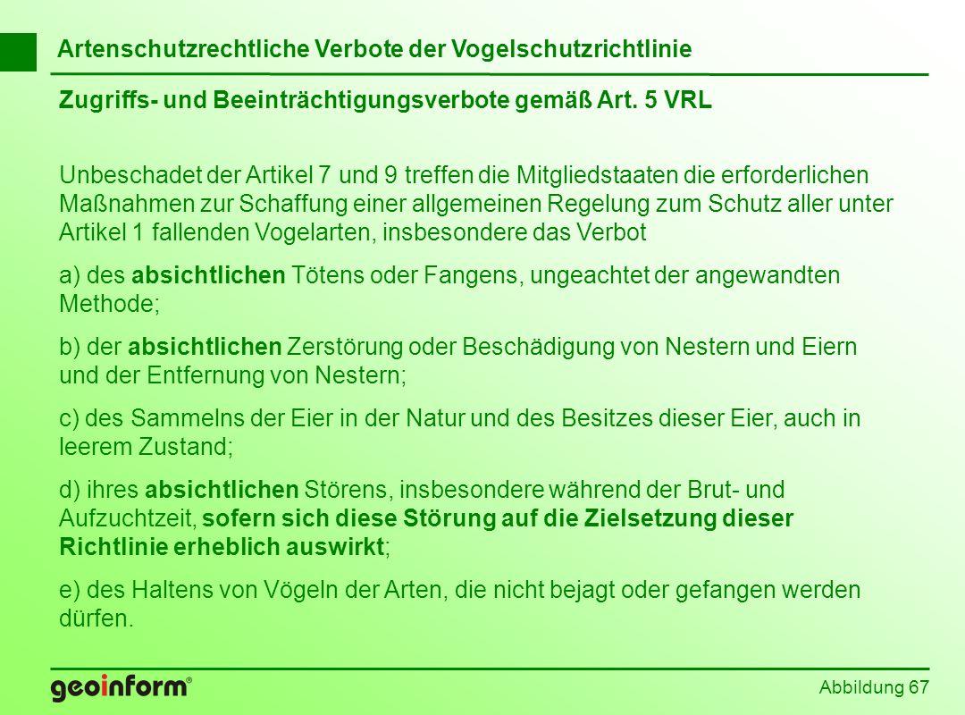 Abbildung 67 Artenschutzrechtliche Verbote der Vogelschutzrichtlinie Zugriffs- und Beeinträchtigungsverbote gemäß Art. 5 VRL Unbeschadet der Artikel 7