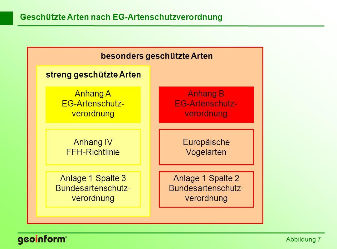 Abbildung 7 Geschützte Arten nach EG-Artenschutzverordnung Anhang B EG-Artenschutz- verordnung Anlage 1 Spalte 2 Bundesartenschutz- verordnung Europäi