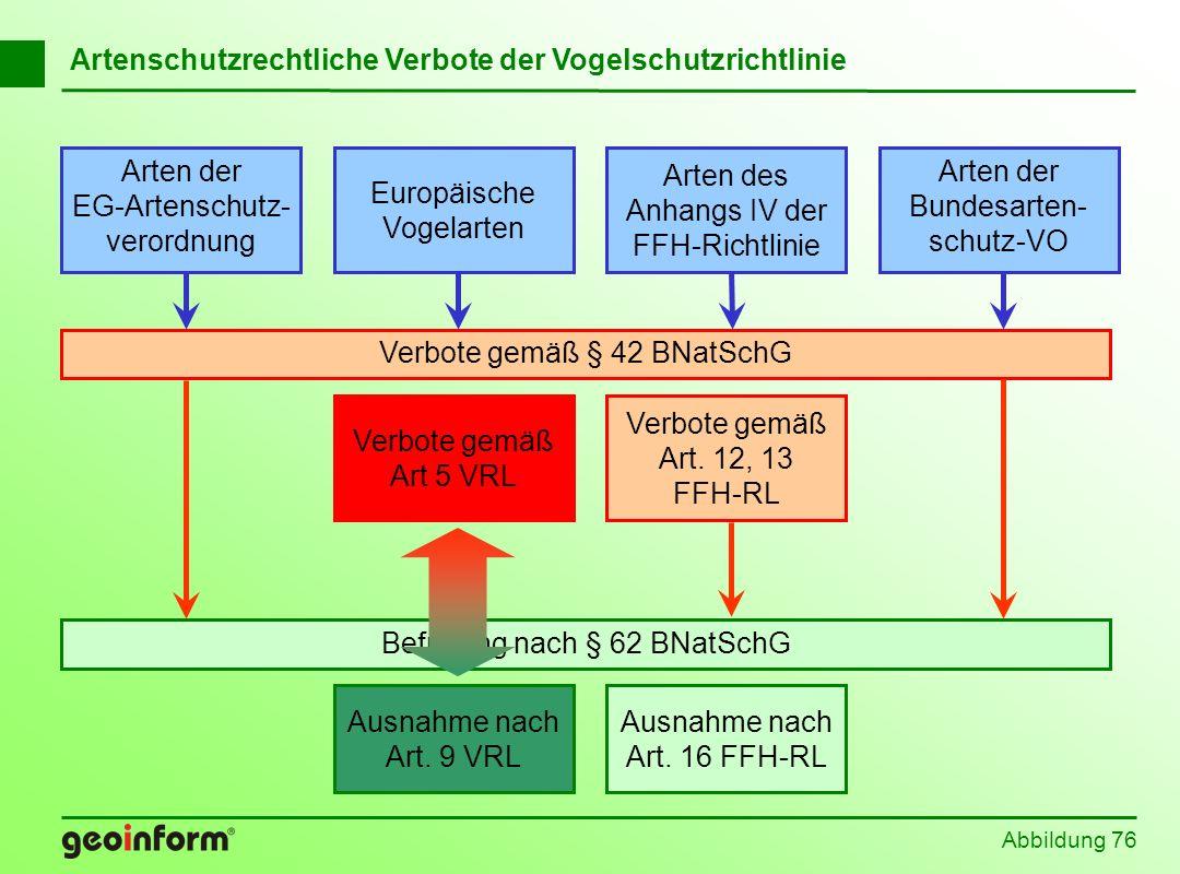 Abbildung 76 Befreiung nach § 62 BNatSchG Europäische Vogelarten Arten der EG-Artenschutz- verordnung Arten der Bundesarten- schutz-VO Arten des Anhan
