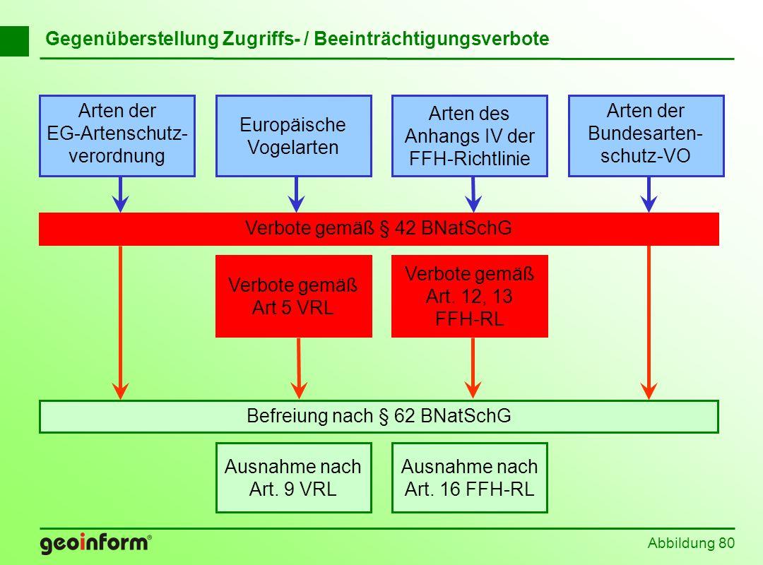 Abbildung 80 Befreiung nach § 62 BNatSchG Europäische Vogelarten Arten der EG-Artenschutz- verordnung Arten der Bundesarten- schutz-VO Arten des Anhan