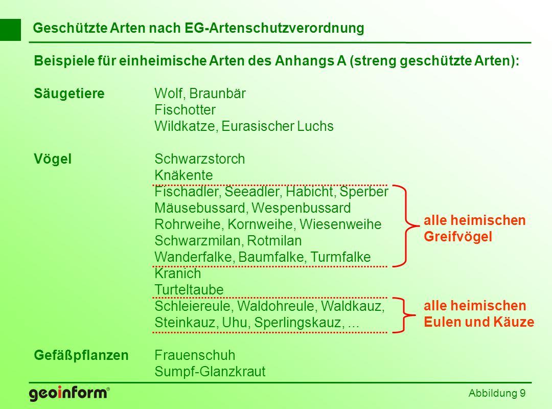 Abbildung 80 Befreiung nach § 62 BNatSchG Europäische Vogelarten Arten der EG-Artenschutz- verordnung Arten der Bundesarten- schutz-VO Arten des Anhangs IV der FFH-Richtlinie Verbote gemäß § 42 BNatSchG Verbote gemäß Art 5 VRL Verbote gemäß Art.