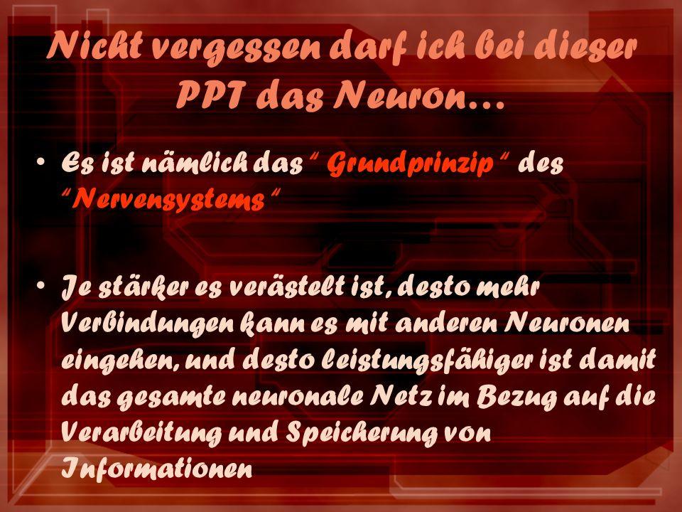 Nicht vergessen darf ich bei dieser PPT das Neuron… Es ist nämlich das Grundprinzip des Nervensystems Je stärker es verästelt ist, desto mehr Verbindungen kann es mit anderen Neuronen eingehen, und desto leistungsfähiger ist damit das gesamte neuronale Netz im Bezug auf die Verarbeitung und Speicherung von Informationen