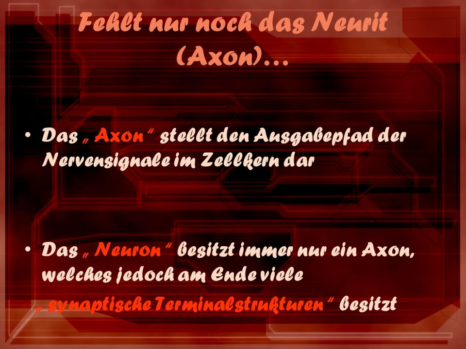 Fehlt nur noch das Neurit (Axon)… Das Axon stellt den Ausgabepfad der Nervensignale im Zellkern dar Das Neuron besitzt immer nur ein Axon, welches jedoch am Ende viele synaptische Terminalstrukturen besitzt