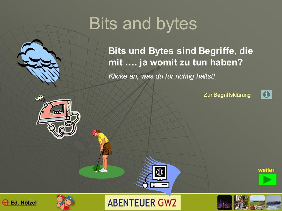 Bits and bytes Du erfährst hier viel aus der Welt des Internets. Zunächst ein paar Begriffe, die du verstehen solltest! Wie nützt du deinen Computer?