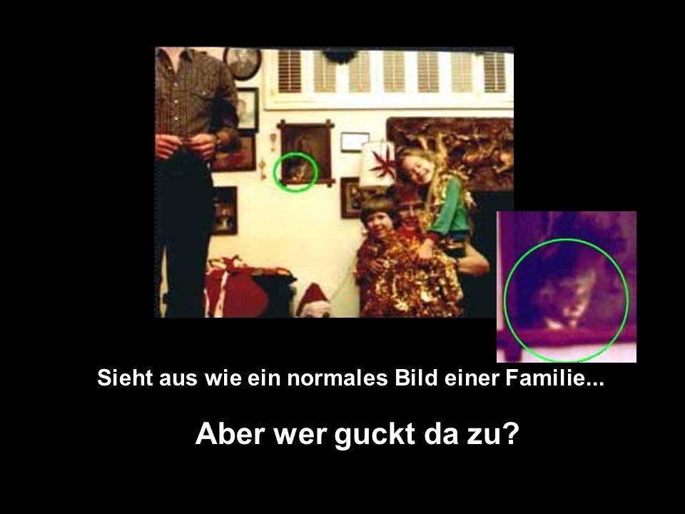 Im November 1995 zerstörte ein Feuer die Stadthalle in Wem inEngland.. Tony O´Rahilly,ein Fotograph nahm dies Bild auf. Als das Foto entwickelt war, s