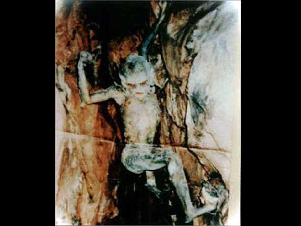 Das folgende Foto war ein Beweisfoto in einer polizeilichen Ermittlung. Ein Fotograf wollte in einer Höhle Bilder machen (Khaimah) obwohl Einheimische