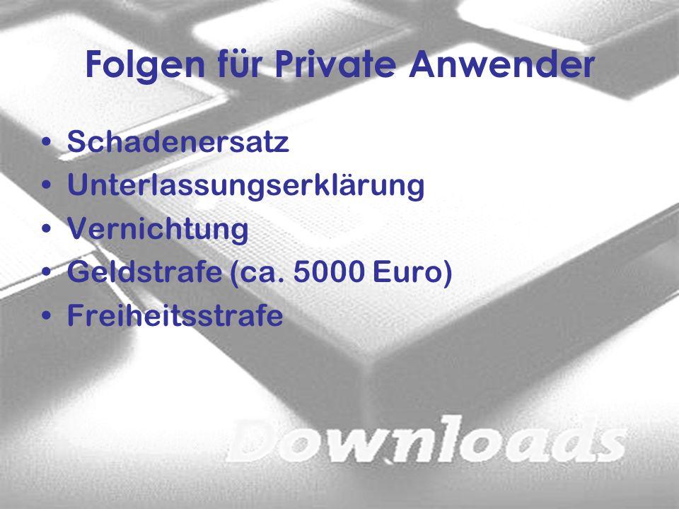Folgen für Private Anwender Schadenersatz Unterlassungserklärung Vernichtung Geldstrafe (ca. 5000 Euro) Freiheitsstrafe