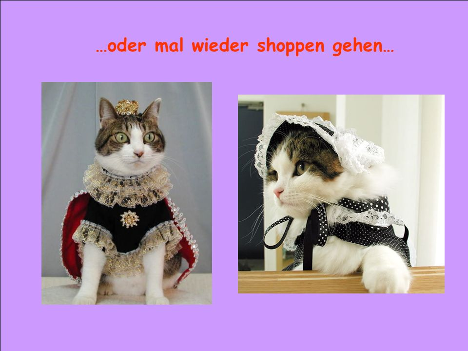…oder mal wieder shoppen gehen…