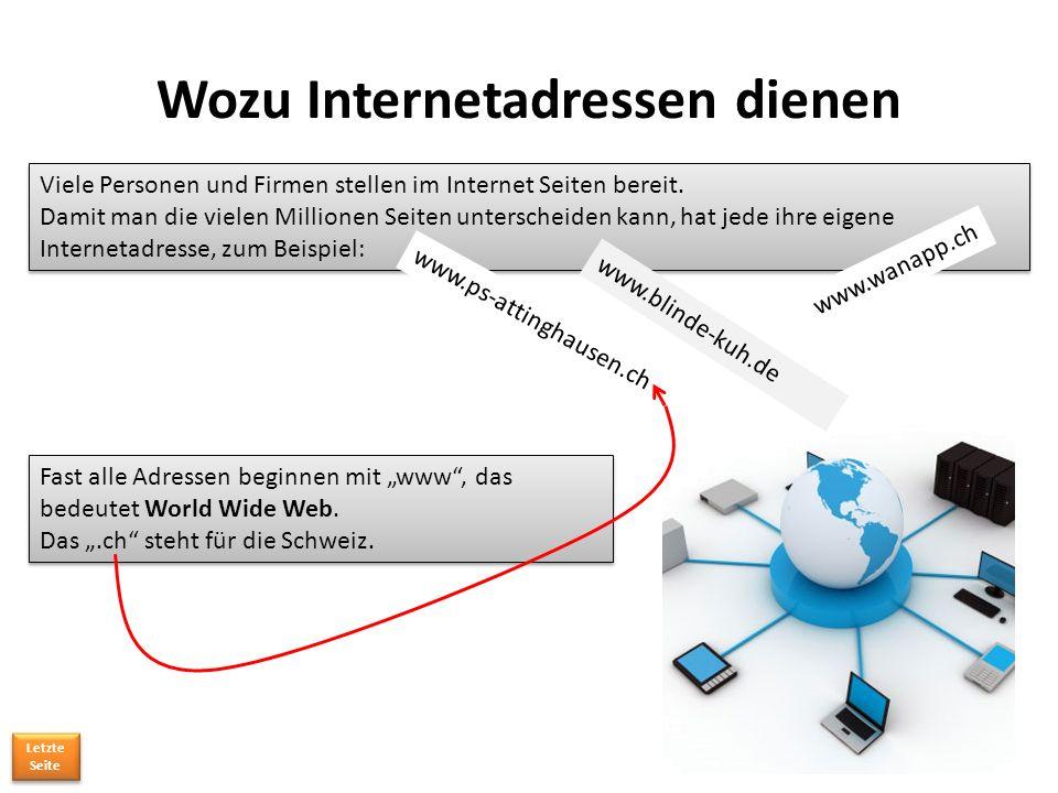 Wozu Internetadressen dienen Viele Personen und Firmen stellen im Internet Seiten bereit.