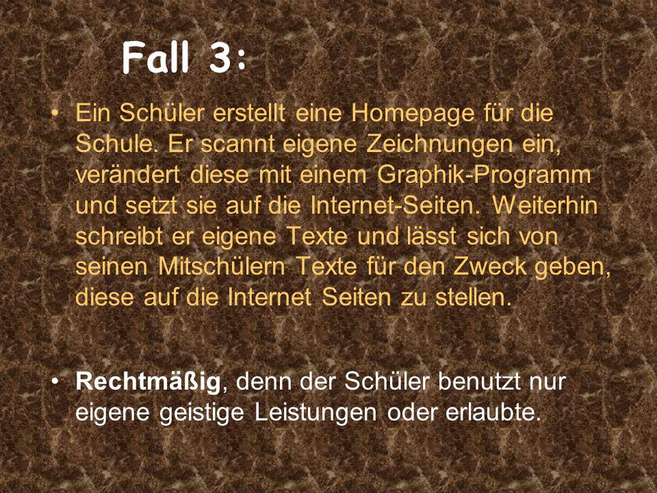 Fall 3: Ein Schüler erstellt eine Homepage für die Schule.