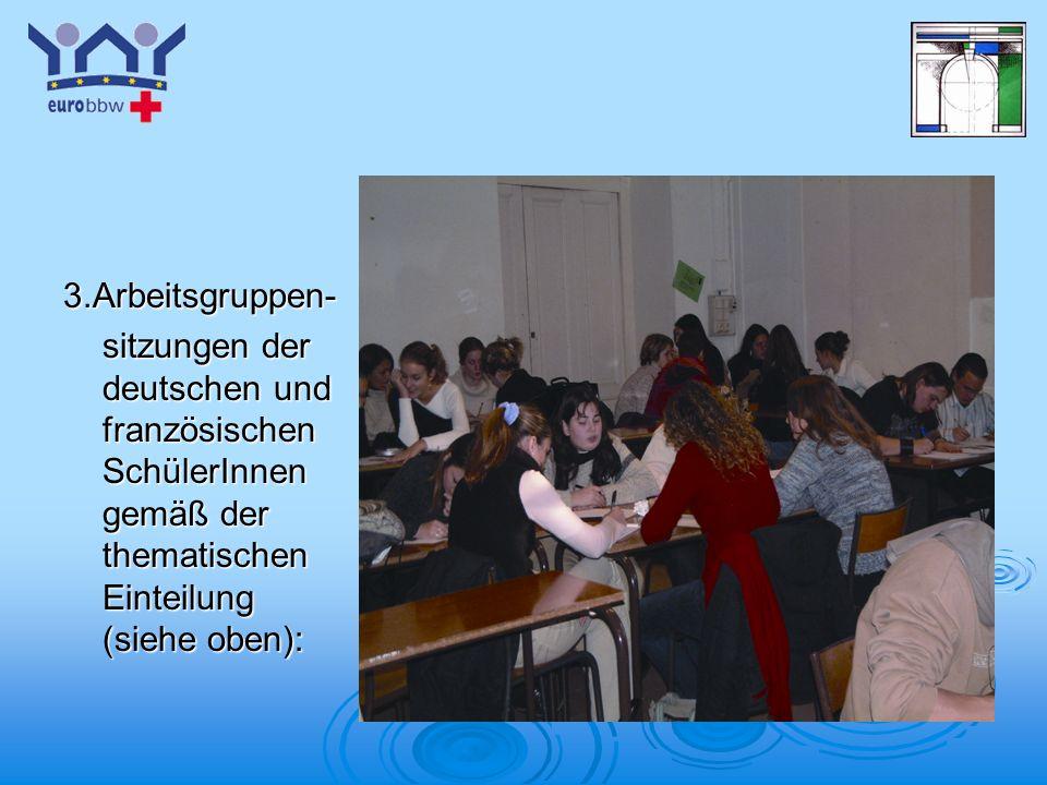 Logo 1 3.Arbeitsgruppen- sitzungen der deutschen und französischen SchülerInnen gemäß der thematischen Einteilung (siehe oben):
